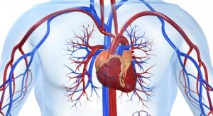 vascular surgeons austin texas