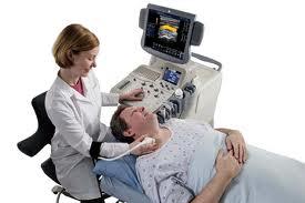 vascular ultrasound screen artery veins